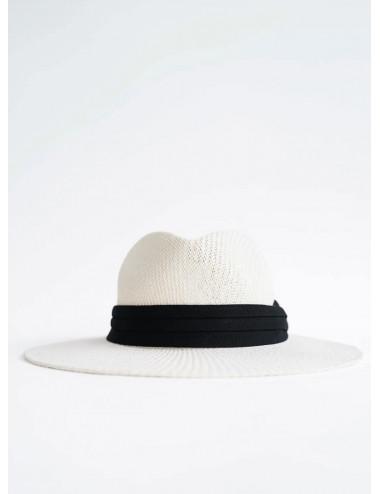 Sombrero cow
